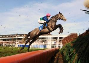 huntingdon-racecourse