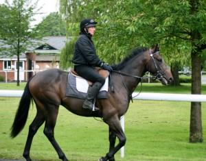 Goldslinger - tough assignment over hurdles
