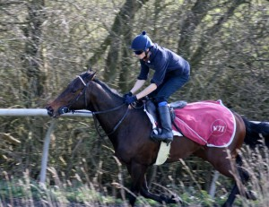 Lancelot Du Lac - aiming for Listed glory