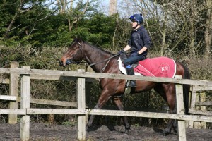 Lancelot Du Lac - good second at Lingfield