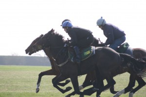 Zebedee colt (nearside) eases to the front