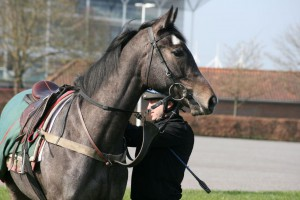 Angel Of The South - makes debut at Windsor