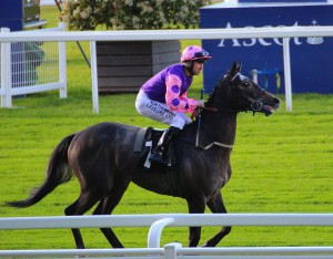 Angel Of The South - runs at Windsor (6.25pm)