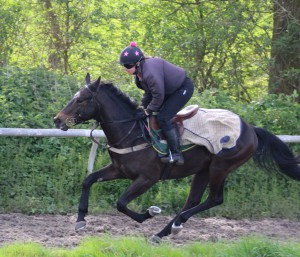 Spring Romance - makes debut at Windsor