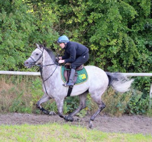 Librisa Breeze (Robert Winston) earlier this week