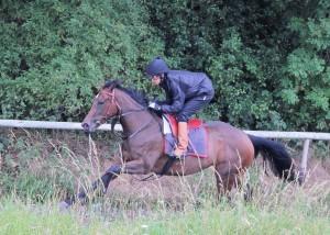 Eirene - Listed winner at Newbury