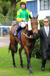 Stake Acclaim - Ayr Gold Cup entry