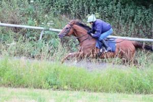 Varsovian - runs in a claimer at Lingfield
