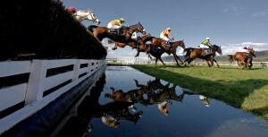 Cheltenham water jump
