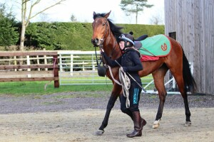 Sophie leading the filly back after exercise