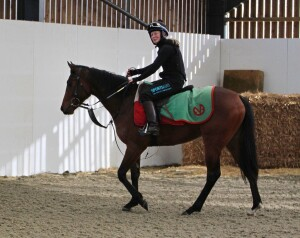"""""""Twinkle"""" being ridden by Sophie Ralston today"""