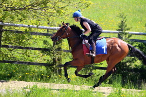 Twilight Bay cantering on her Naming Day