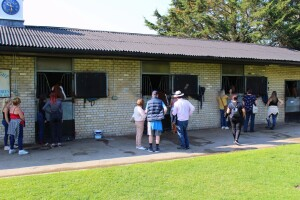 Guests looking around the main yard